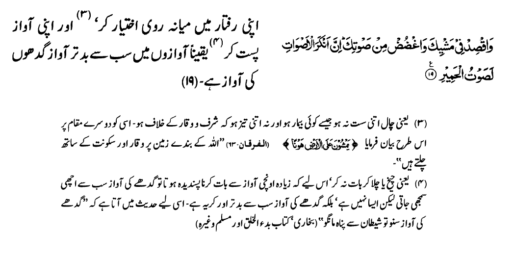 Surah Luqman (verse 19)